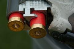 gun-1761235_960_720